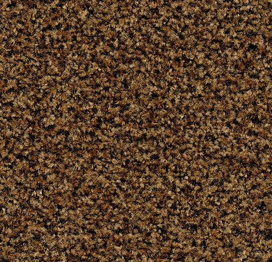 Coral Brush 5716 masala brown